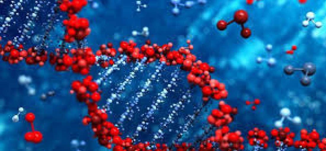 Image result for Next Generation Cancer Diagnostics