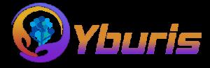 Yburis Infotech - Web Development