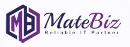 Matebiz India - Web Development