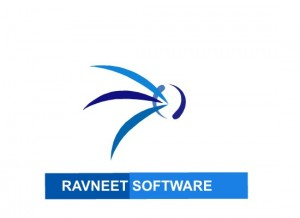 Ravneet Software - Data Entry & SEO