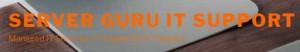 Server Guru - IT Support