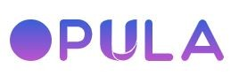 Opula Software - website development