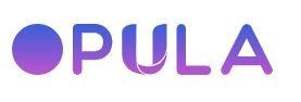 Opula Software - website development