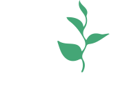 ZOI Education