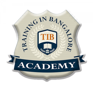 TIB Academy -Training institute