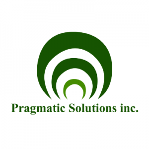Pragmatic Solution - Web development