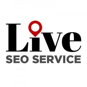 Live SEO Service - SEO & Web Hosting