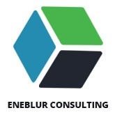 Eneblur Consulting - Web Design & Mobile App development