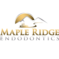 Maple Ridge Endodontics - Dental Care