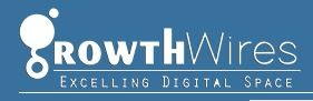 Growth Wires - Digital Marketing