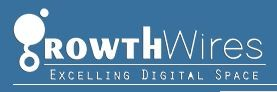 Growth Wires - Web designing & SEO services