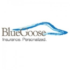 Blue Goose - Medicare and Health insurance provider