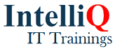 IntelliQ IT - Training institute