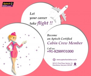 Aviation training academy in  India
