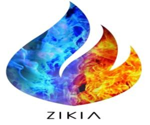 Zikia Biomeds And Pharmaceuticals Pvt Ltd