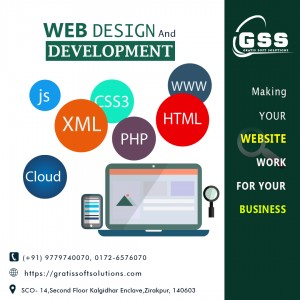 software development service in zirakpur