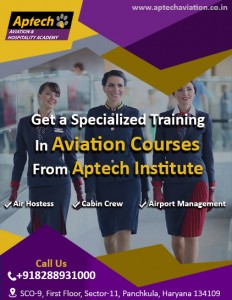 aviation learning institute india