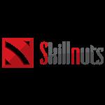 Skillnuts Studios