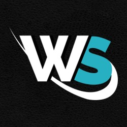 WordSuccor - WordPress Development Company