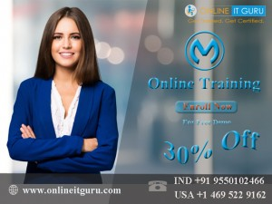 Mulesoft Online Training Hyderabad - OnlineITGuru