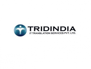 Tridindia Transcription Services
