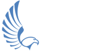 Falcon Digital Marketing