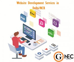 Website Development Services Delhi NCR