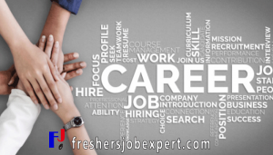 Freshers Job Expert