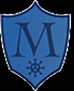 Shield of Magen