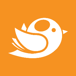 BirdBrain Logic - Web Development Perth | SEO