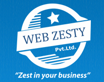 Webzesty - Website Development Company in Delhi, India