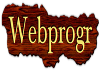 Webprogr -  Custom development