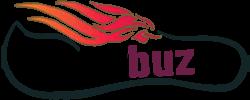 Tiger Buz Email Marketing Company