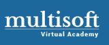 Multisoft Virtual Academy