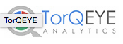 TorQEYE Anlytics - Big Data Analytics Solutions India
