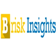 Brisk Insights - Market Research