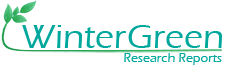 WinterGreen Research Reports