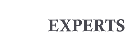 Wordpress Experts | India