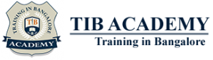 TIB Academy - Hadoop Training Institute