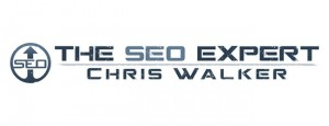The SEO Expert