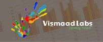 Vismaad Labs - Web Designing and Development