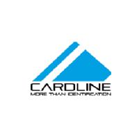 Card Line Electronics LLC