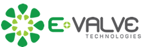 E-valve Technologies - IT Services